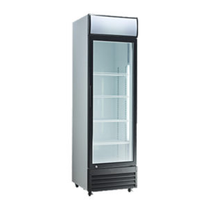 Exquisite DC360P Single Door Display Fridge – 330 Litre
