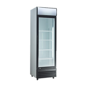 Exquisite DC400P Single Door Display Fridge – 400 Litre